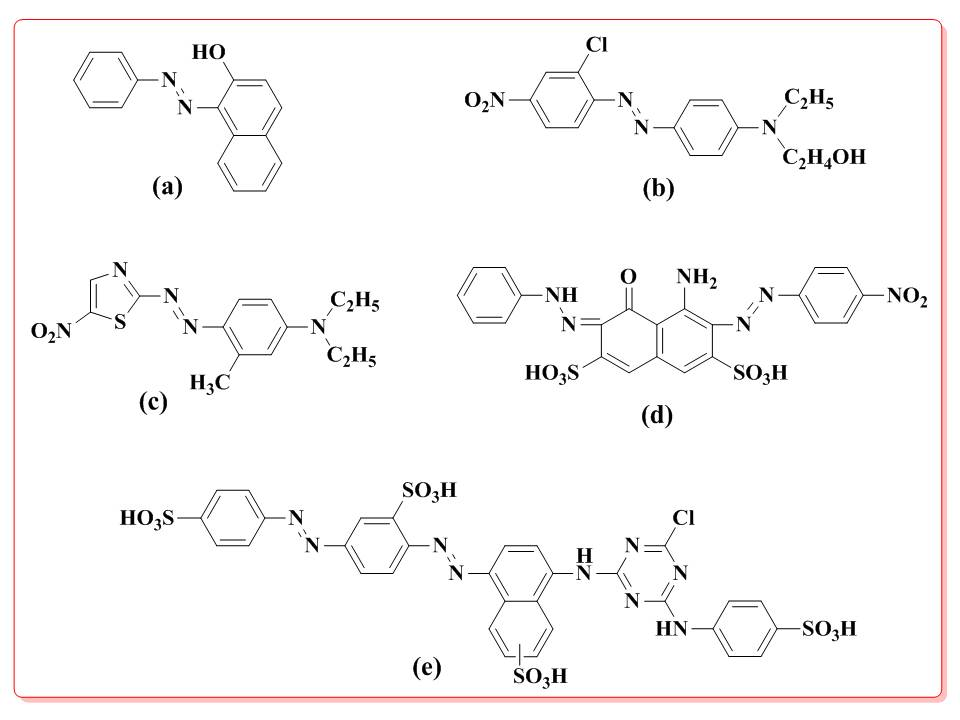Microbial Decolorization of Azo Dyes ̶ A Mini Review